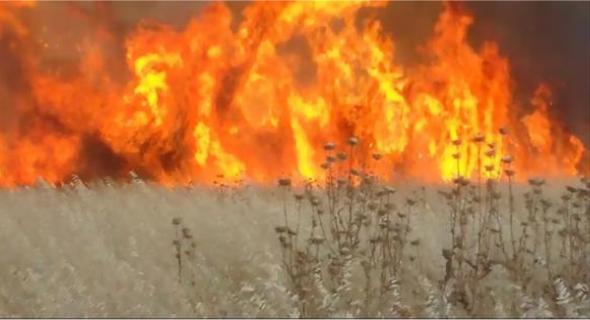 Capture Fires MD 1